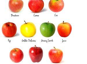 cura de slabire cu mere